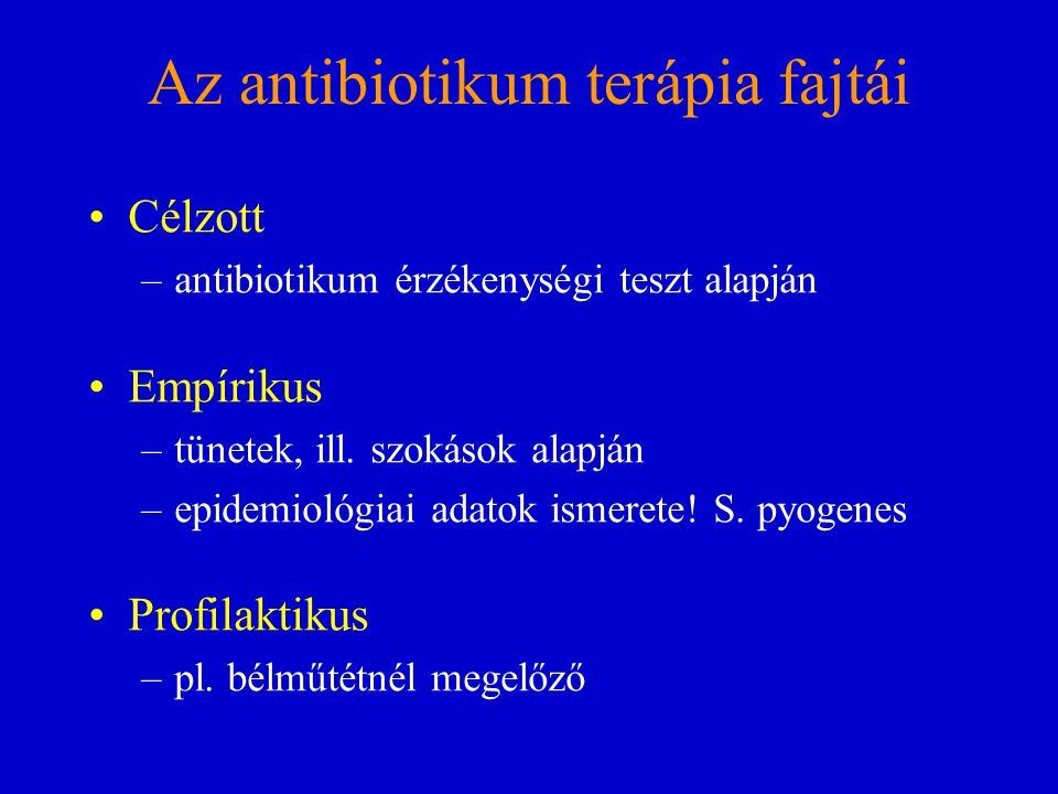 Az antibiotikum terápia fajtái