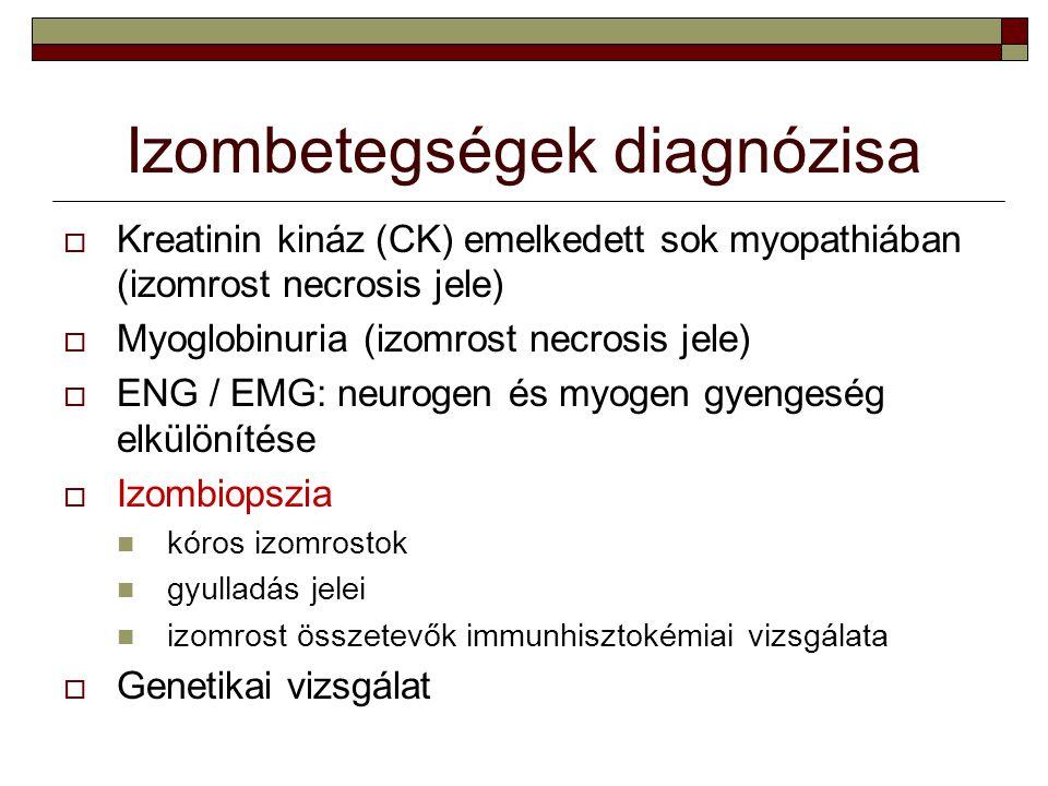 Izombetegségek diagnózisa