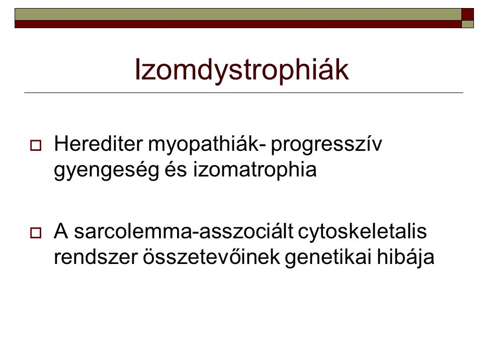 Izomdystrophiák Herediter myopathiák- progresszív gyengeség és izomatrophia.
