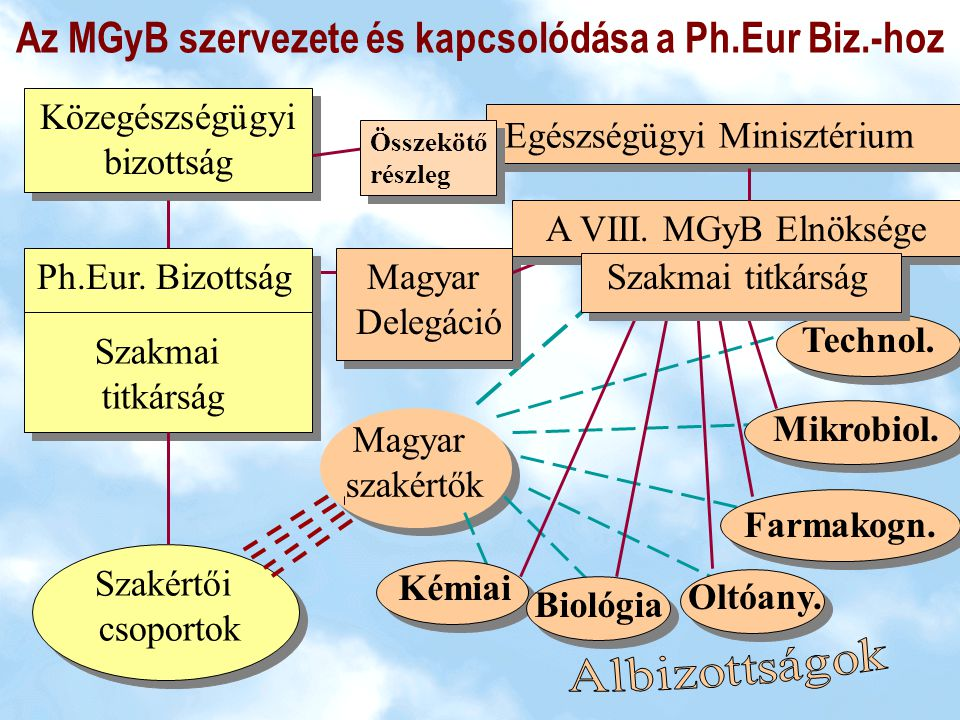 Az MGyB szervezete és kapcsolódása a Ph.Eur Biz.-hoz