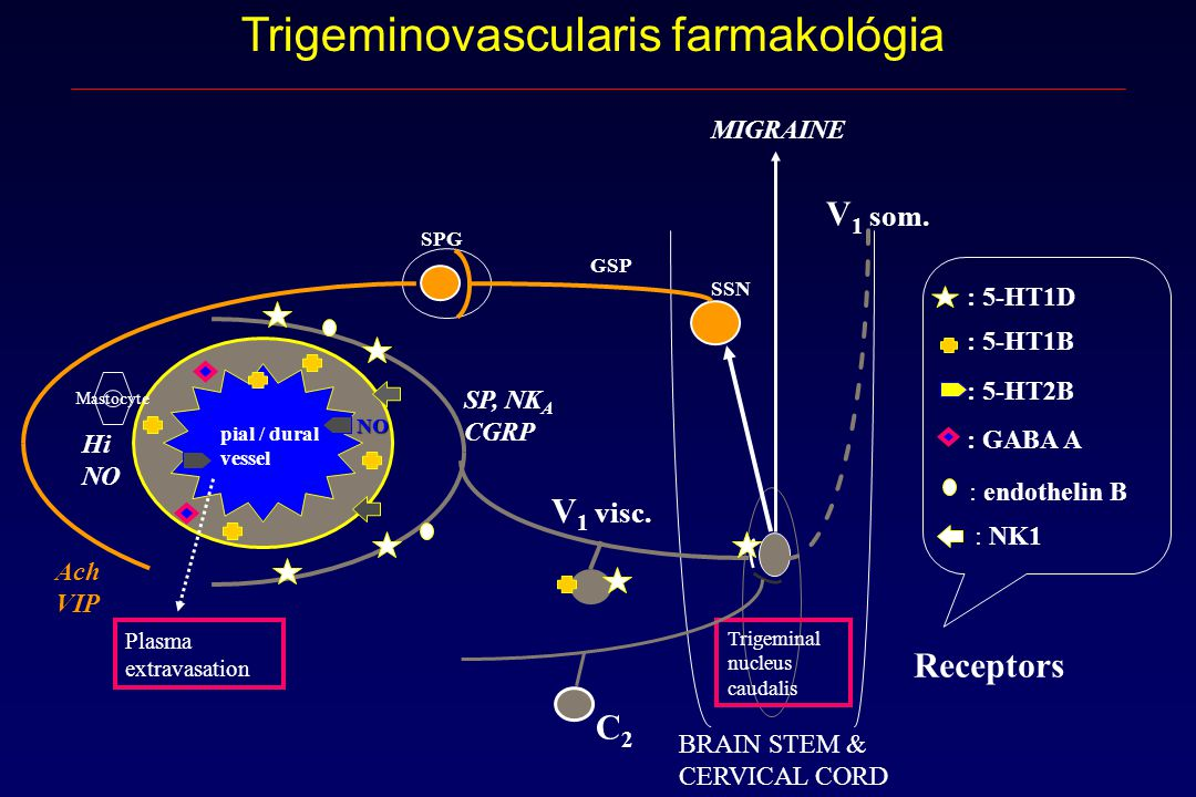 Trigeminovascularis farmakológia