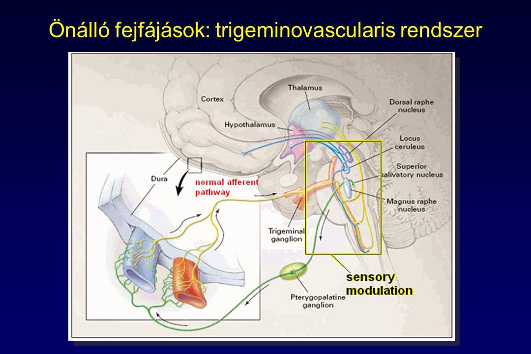 Önálló fejfájások: trigeminovascularis rendszer