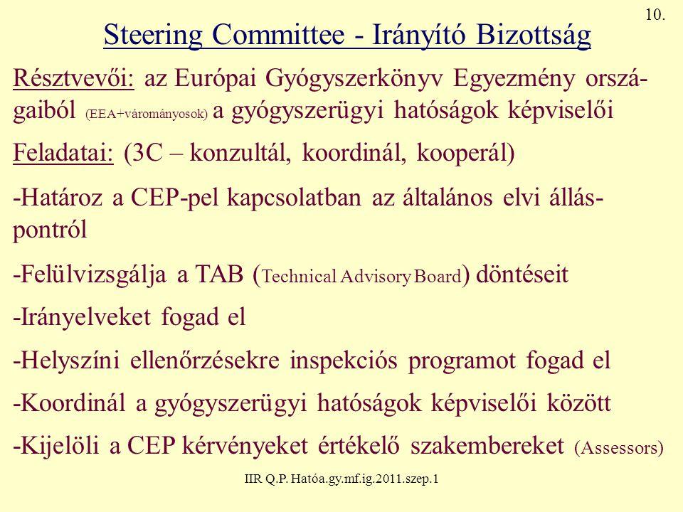Steering Committee - Irányító Bizottság