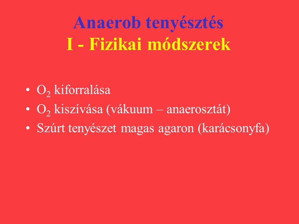 Anaerob tenyésztés I - Fizikai módszerek