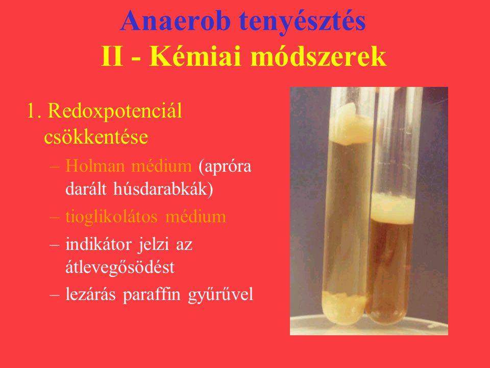 Anaerob tenyésztés II - Kémiai módszerek