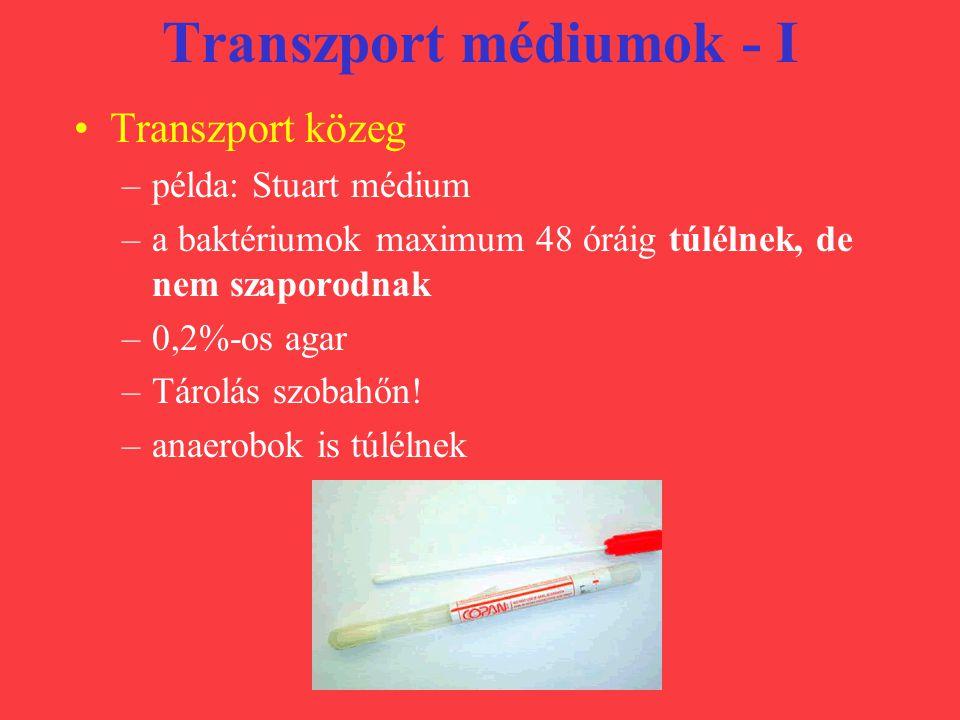 Transzport médiumok - I