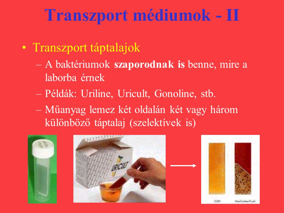 Transzport médiumok - II
