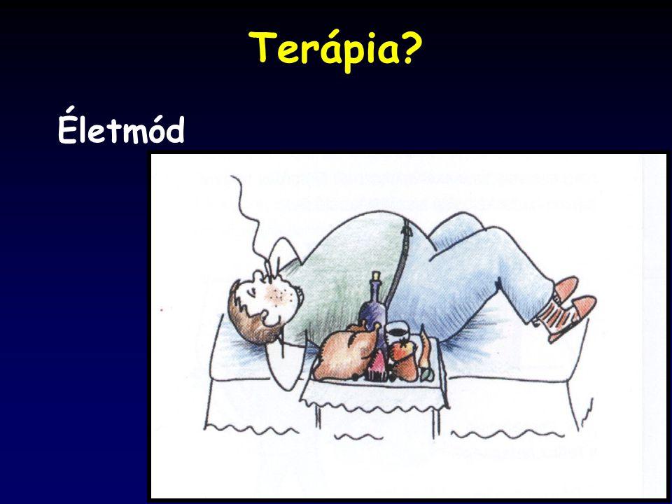 Terápia Életmód
