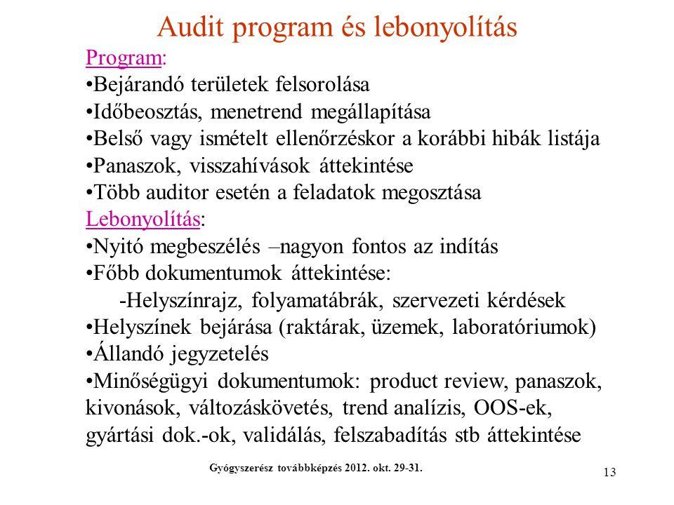 Audit program és lebonyolítás