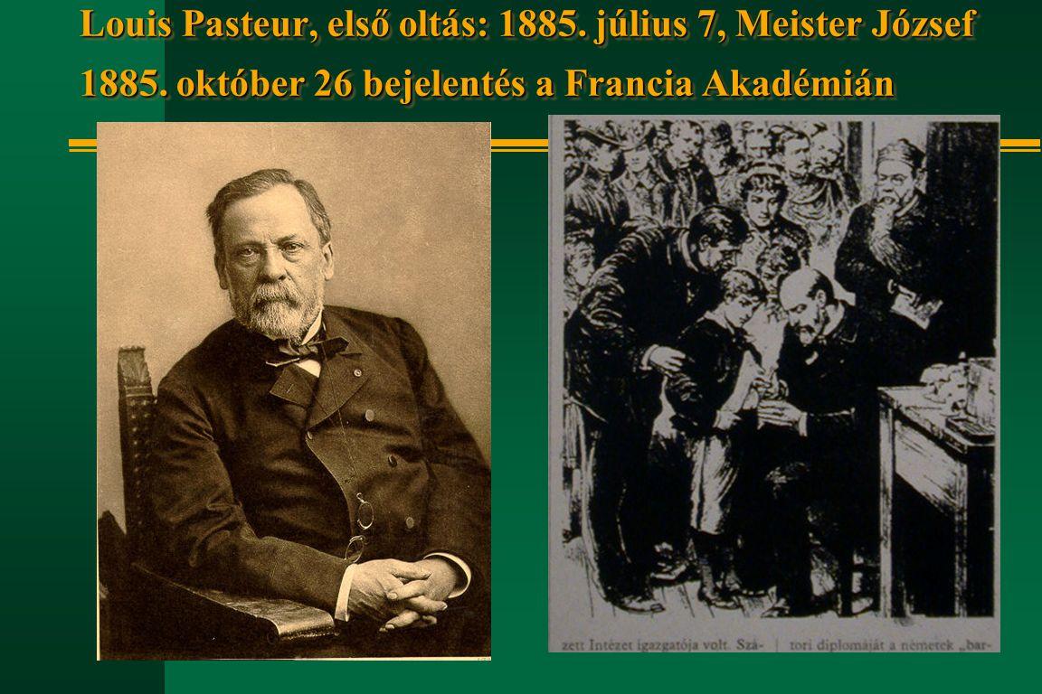 Louis Pasteur, első oltás: 1885. július 7, Meister József 1885