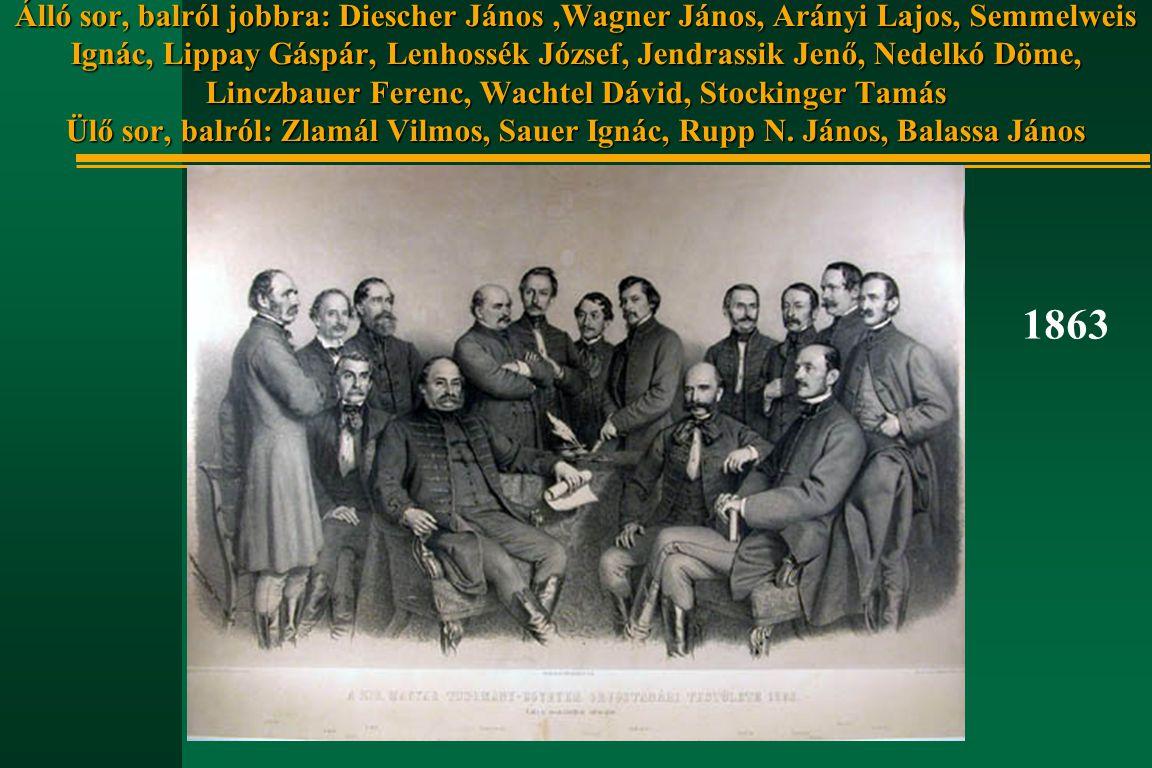 Álló sor, balról jobbra: Diescher János ,Wagner János, Arányi Lajos, Semmelweis Ignác, Lippay Gáspár, Lenhossék József, Jendrassik Jenő, Nedelkó Döme, Linczbauer Ferenc, Wachtel Dávid, Stockinger Tamás Ülő sor, balról: Zlamál Vilmos, Sauer Ignác, Rupp N. János, Balassa János