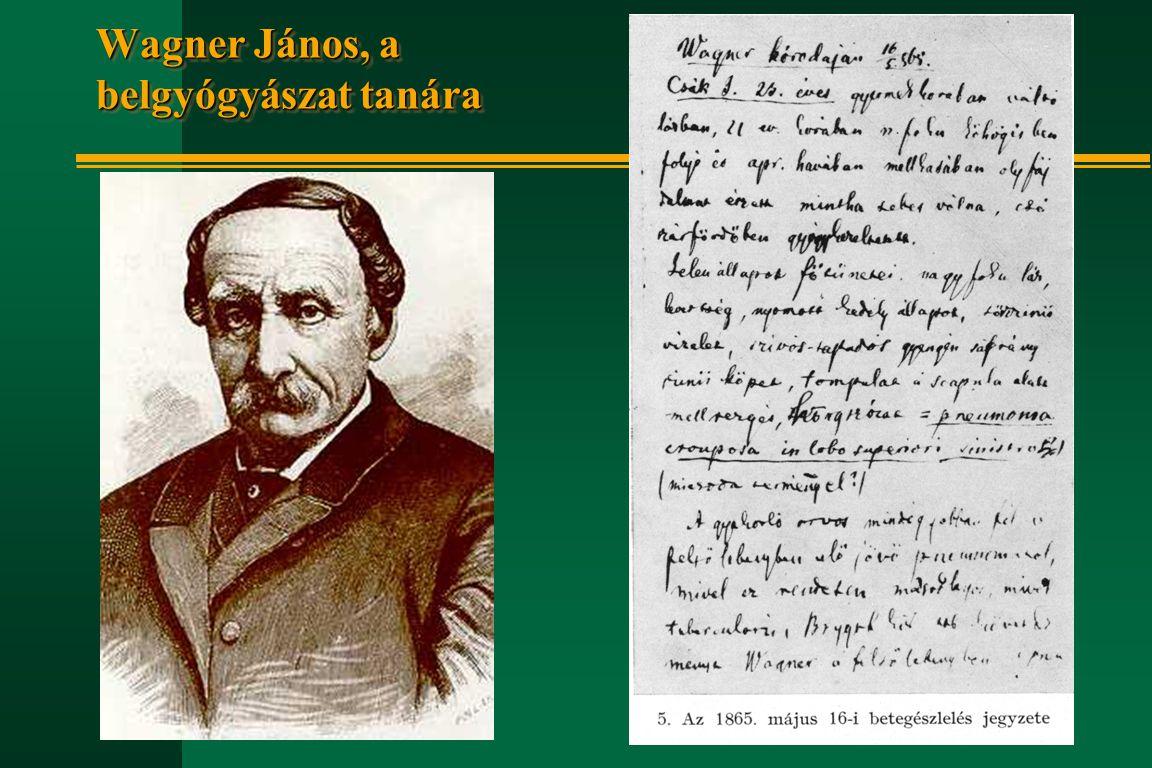 Wagner János, a belgyógyászat tanára