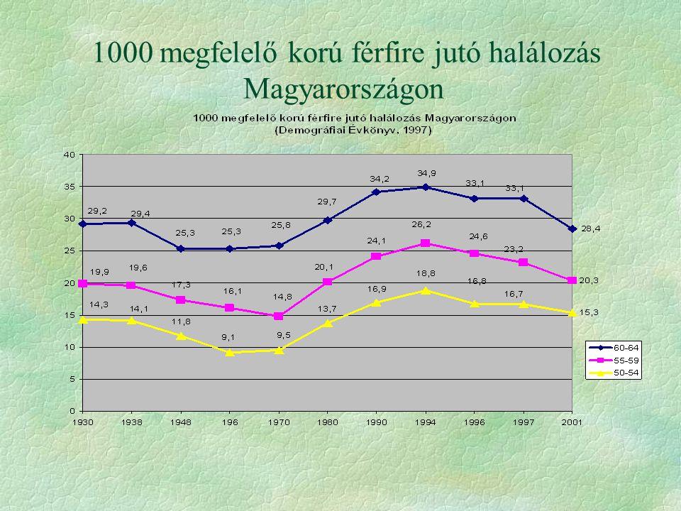 1000 megfelelő korú férfire jutó halálozás Magyarországon