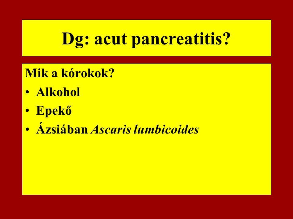 Dg: acut pancreatitis Mik a kórokok Alkohol Epekő