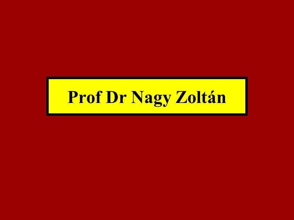 Prof Dr Nagy Zoltán