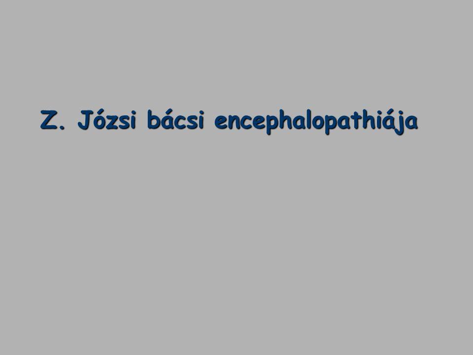 Z. Józsi bácsi encephalopathiája