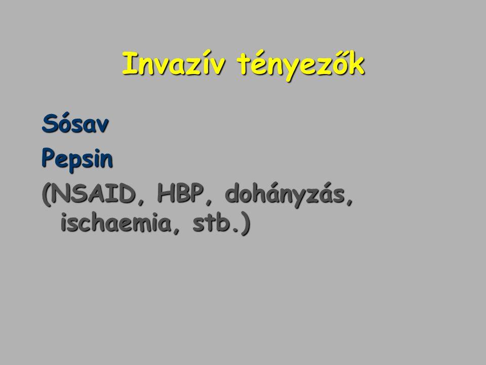 Invazív tényezők Sósav Pepsin (NSAID, HBP, dohányzás, ischaemia, stb.)