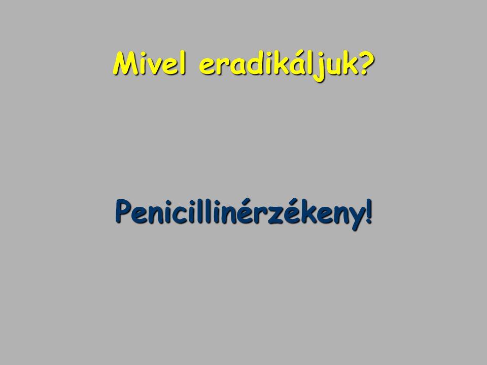 Mivel eradikáljuk Penicillinérzékeny!