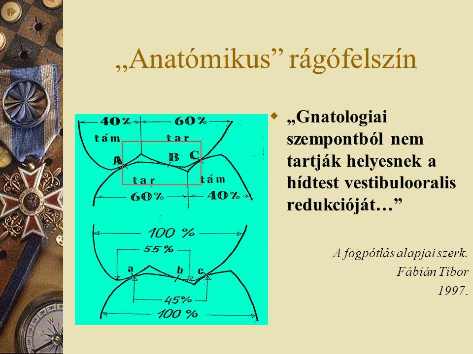 """""""Anatómikus rágófelszín"""