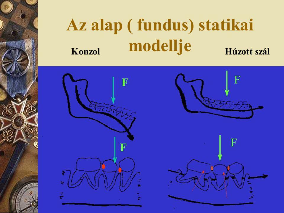Az alap ( fundus) statikai modellje