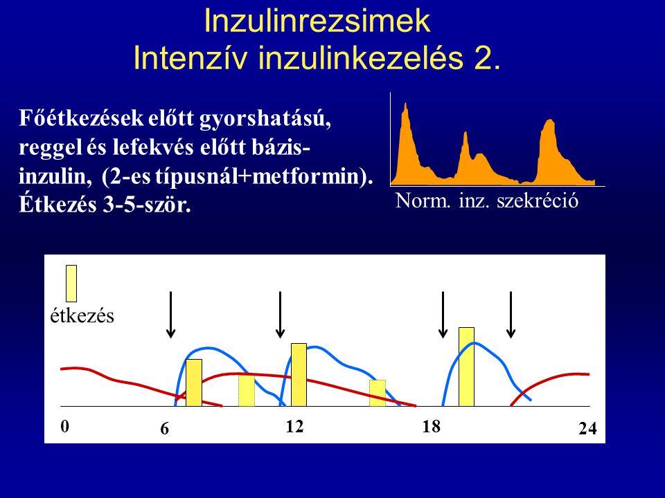 Inzulinrezsimek Intenzív inzulinkezelés 2.