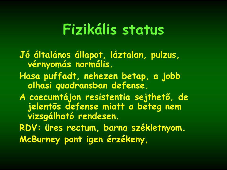 Fizikális status Jó általános állapot, láztalan, pulzus, vérnyomás normális. Hasa puffadt, nehezen betap, a jobb alhasi quadransban defense.