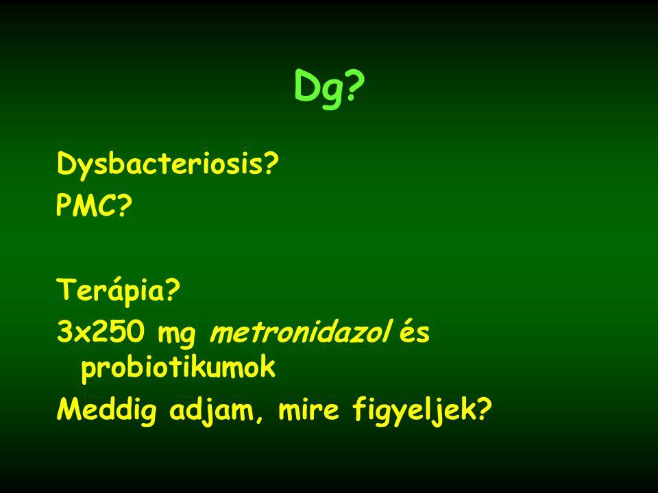 Dg Dysbacteriosis PMC Terápia