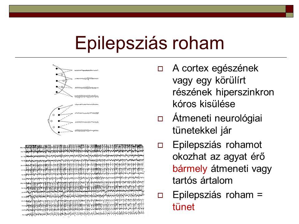 Epilepsziás roham A cortex egészének vagy egy körülírt részének hiperszinkron kóros kisülése. Átmeneti neurológiai tünetekkel jár.