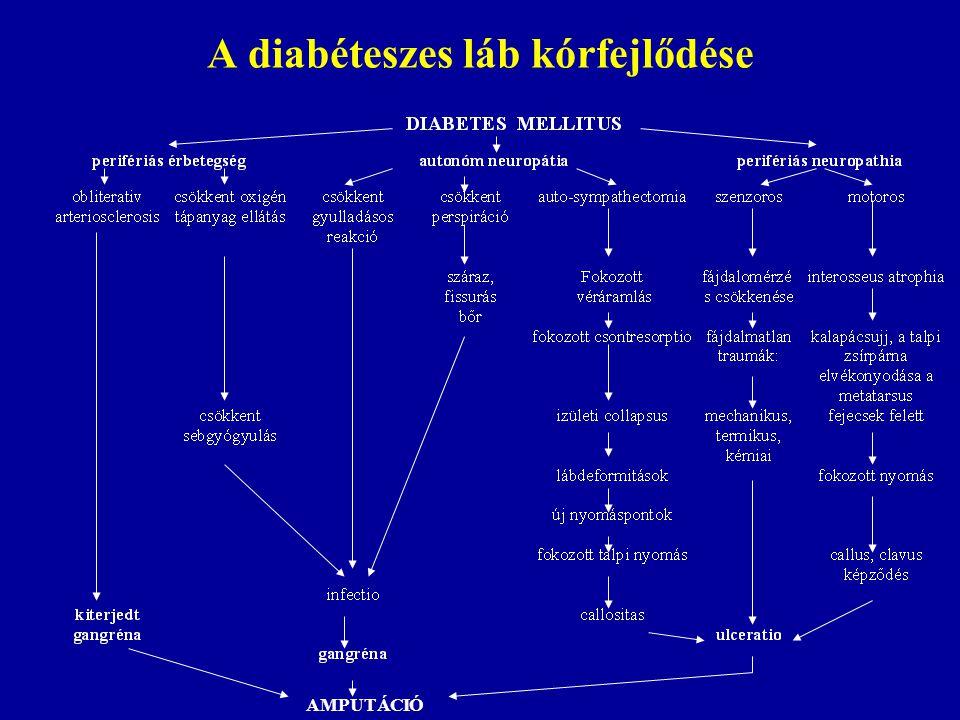 A diabéteszes láb kórfejlődése