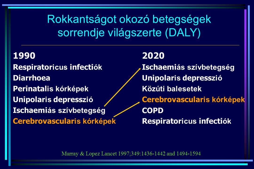 Rokkantságot okozó betegségek sorrendje világszerte (DALY)