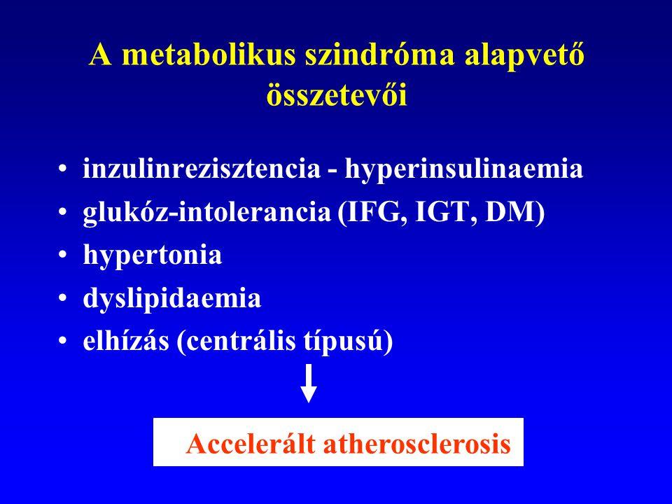 A metabolikus szindróma alapvető összetevői