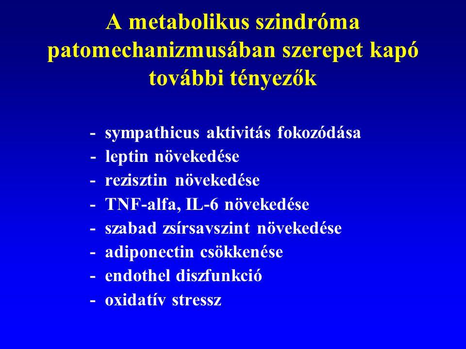 A metabolikus szindróma patomechanizmusában szerepet kapó további tényezők