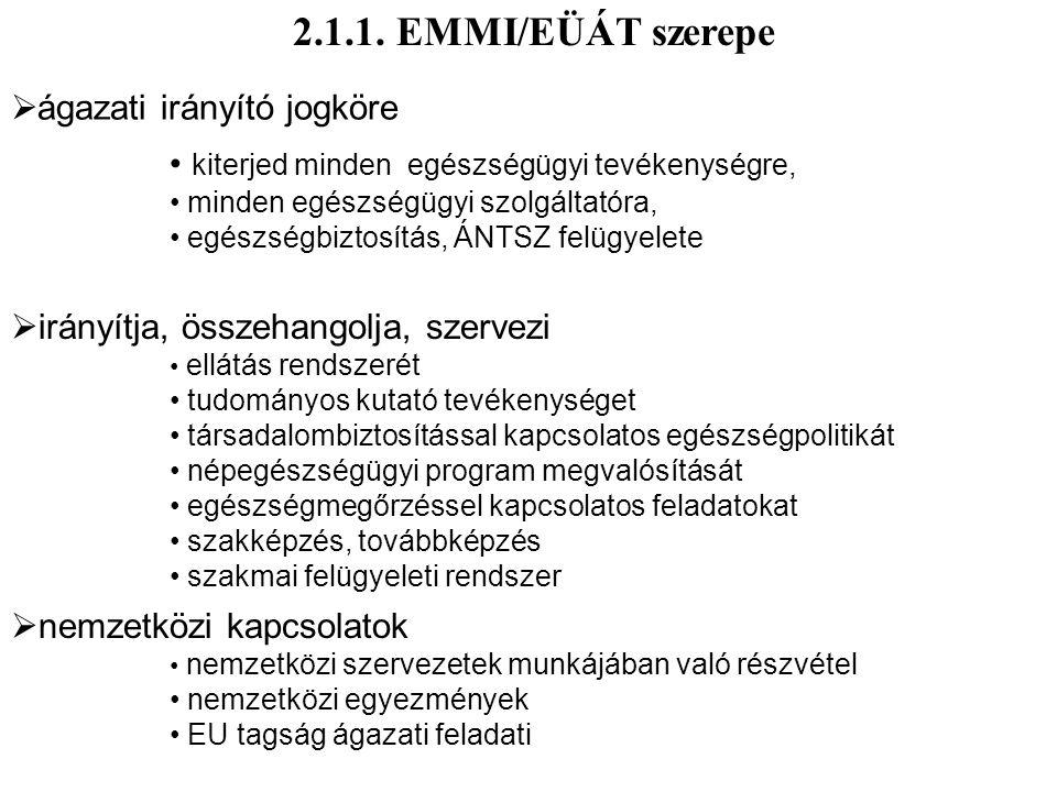 2.1.1. EMMI/EÜÁT szerepe ágazati irányító jogköre