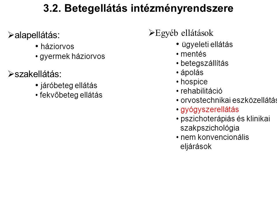 3.2. Betegellátás intézményrendszere