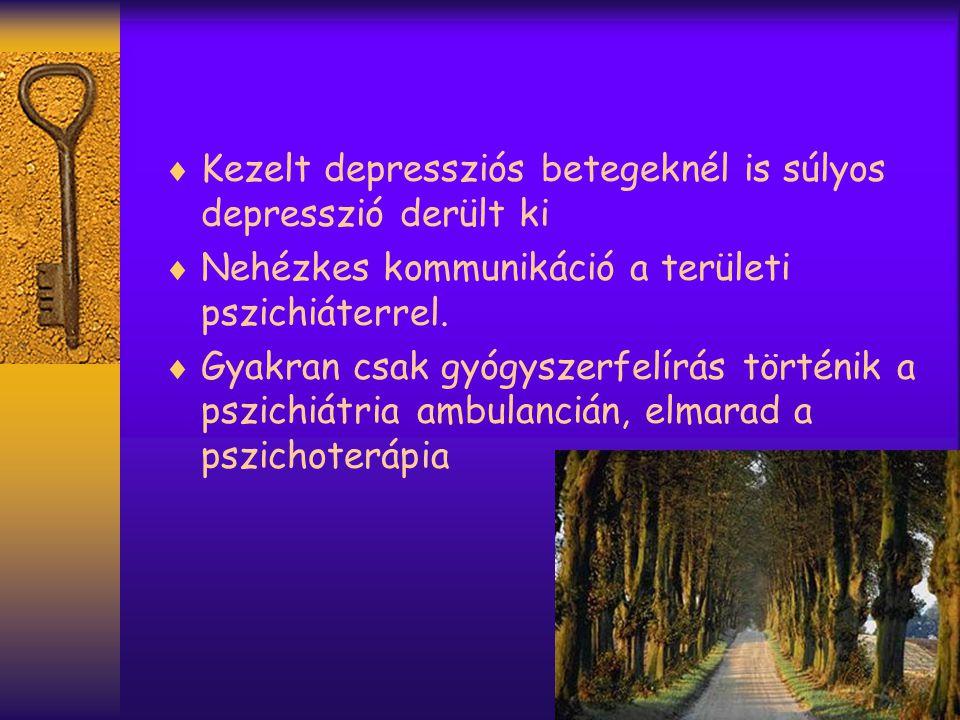 Kezelt depressziós betegeknél is súlyos depresszió derült ki