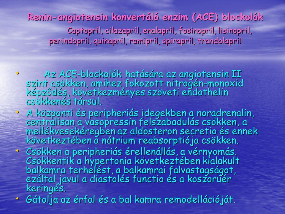 Renin-angiotensin konvertáló enzim (ACE) blockolók