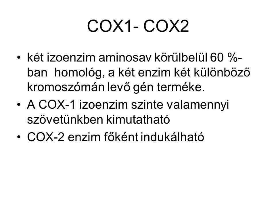 COX1- COX2 két izoenzim aminosav körülbelül 60 %-ban homológ, a két enzim két különböző kromoszómán levő gén terméke.