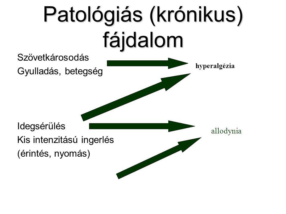 Patológiás (krónikus) fájdalom