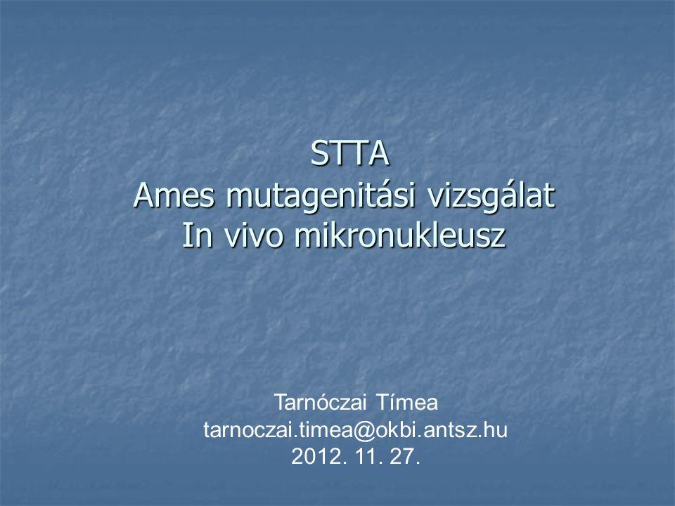STTA Ames mutagenitási vizsgálat In vivo mikronukleusz