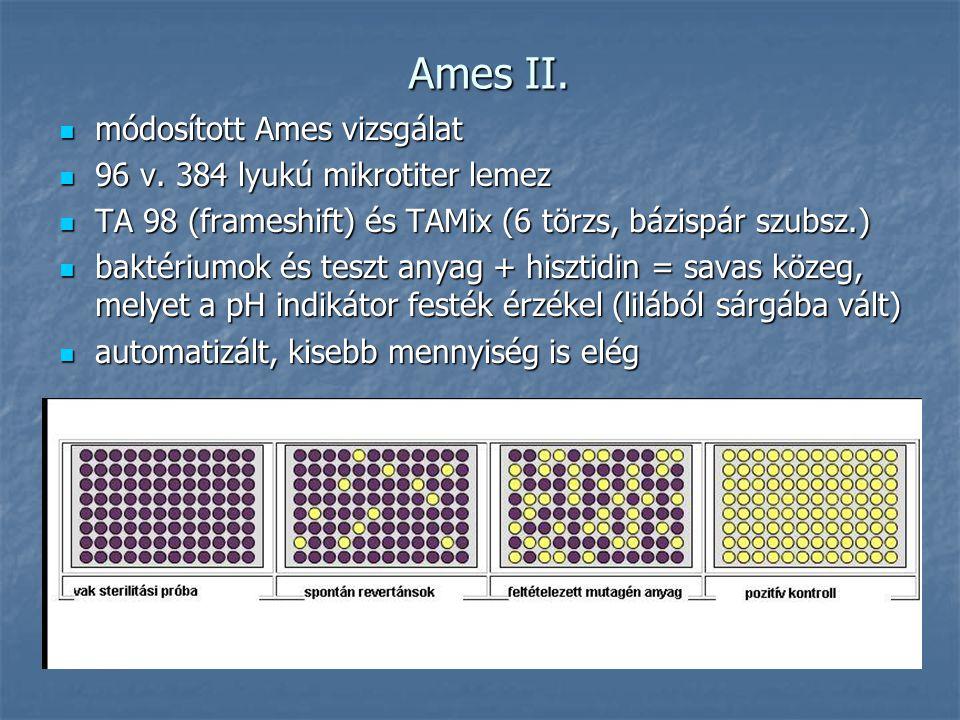 Ames II. módosított Ames vizsgálat 96 v. 384 lyukú mikrotiter lemez