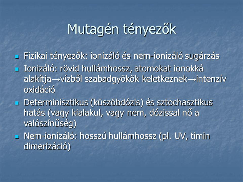Mutagén tényezők Fizikai tényezők: ionizáló és nem-ionizáló sugárzás