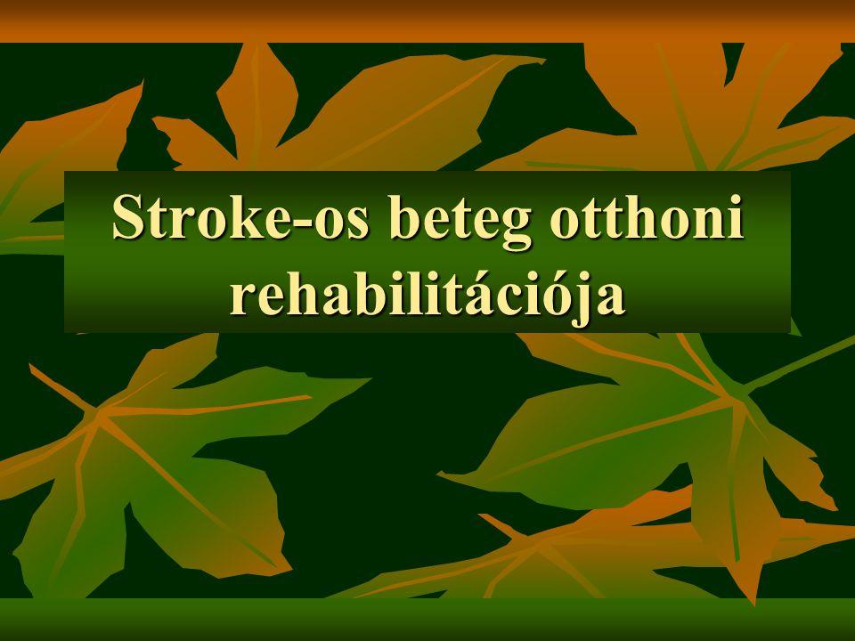 Stroke-os beteg otthoni rehabilitációja