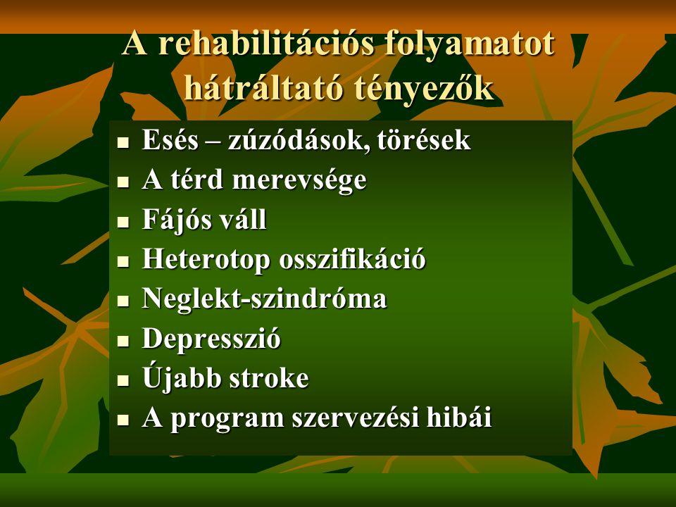 A rehabilitációs folyamatot hátráltató tényezők