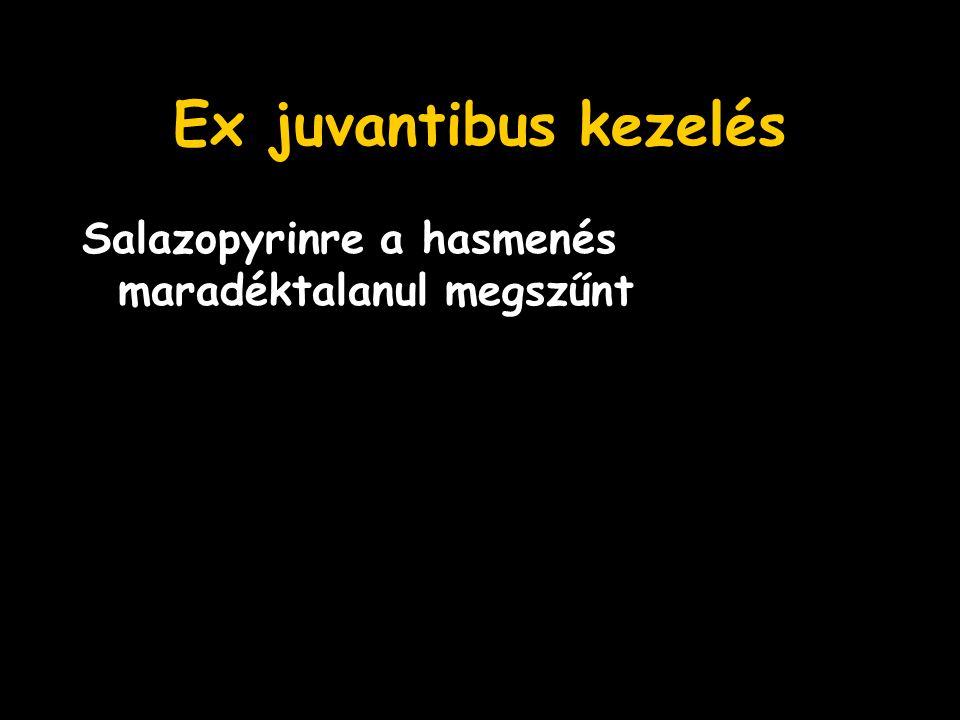 Ex juvantibus kezelés Salazopyrinre a hasmenés maradéktalanul megszűnt