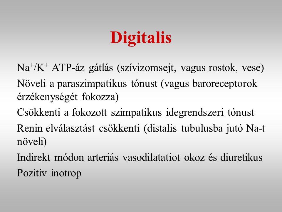 Digitalis Na+/K+ ATP-áz gátlás (szívizomsejt, vagus rostok, vese)