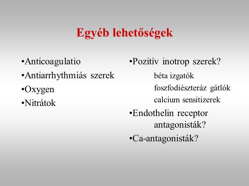 Egyéb lehetőségek Anticoagulatio Antiarrhythmiás szerek Oxygen