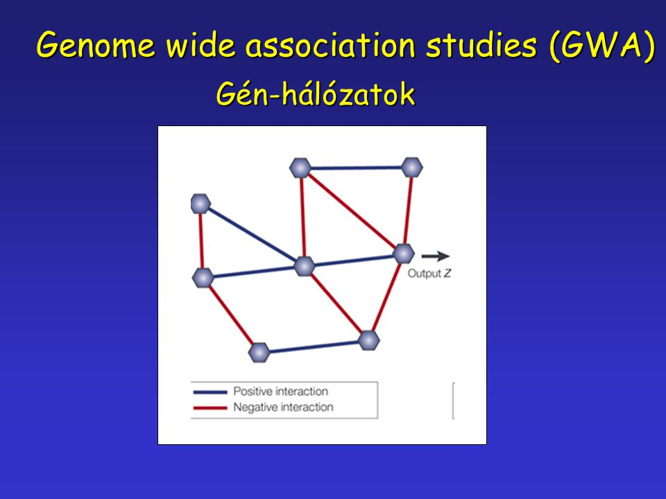 Genome wide association studies (GWA)