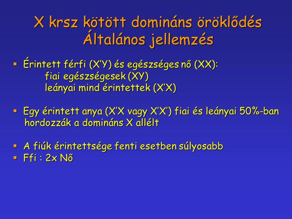 X krsz kötött domináns öröklődés Általános jellemzés
