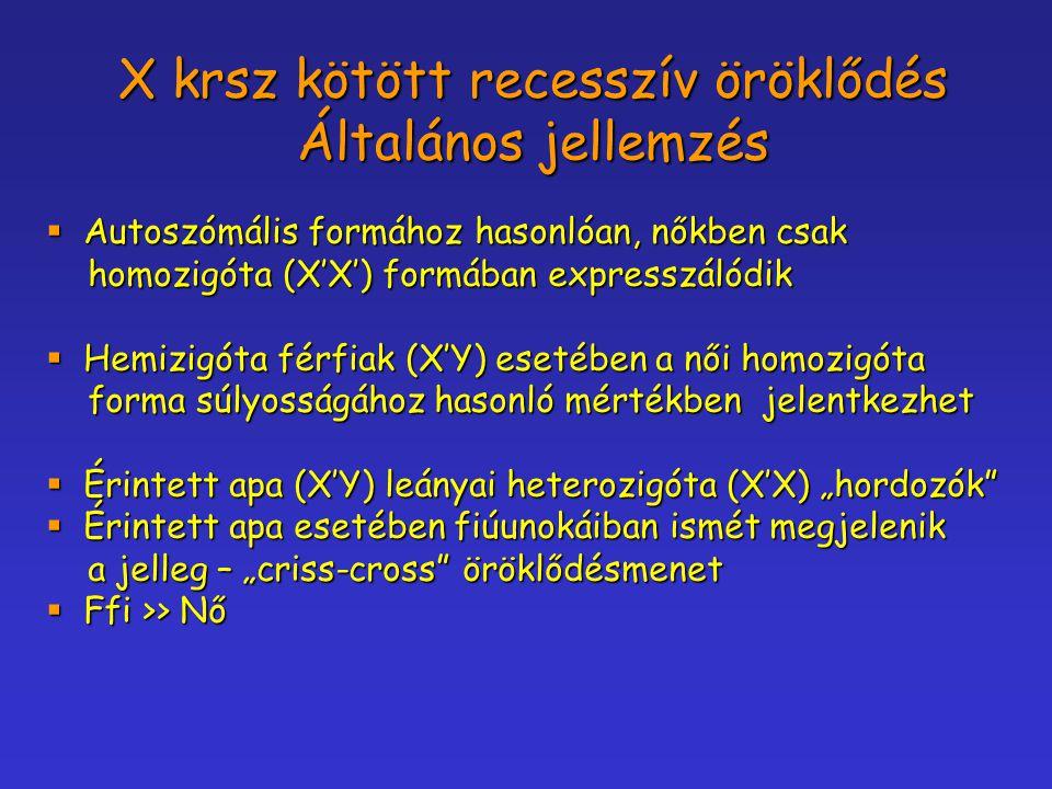 X krsz kötött recesszív öröklődés Általános jellemzés