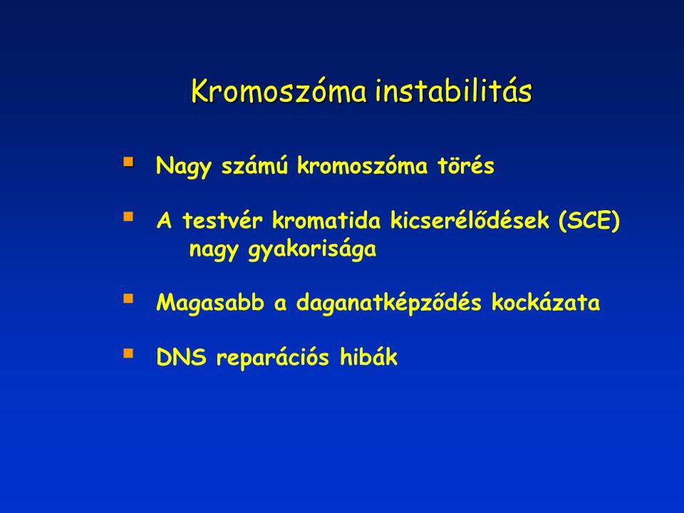 Kromoszóma instabilitás